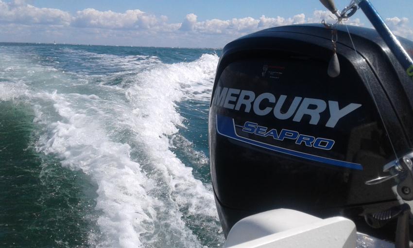 Moteur SeaPro Mercury